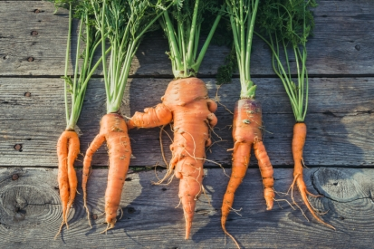 0821_fea_ugly-veggies